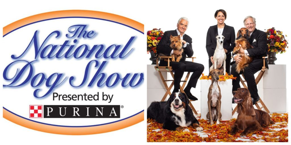 Purina National Dog Show 2020.The National Dog Show Presented By Purina Archives We Are